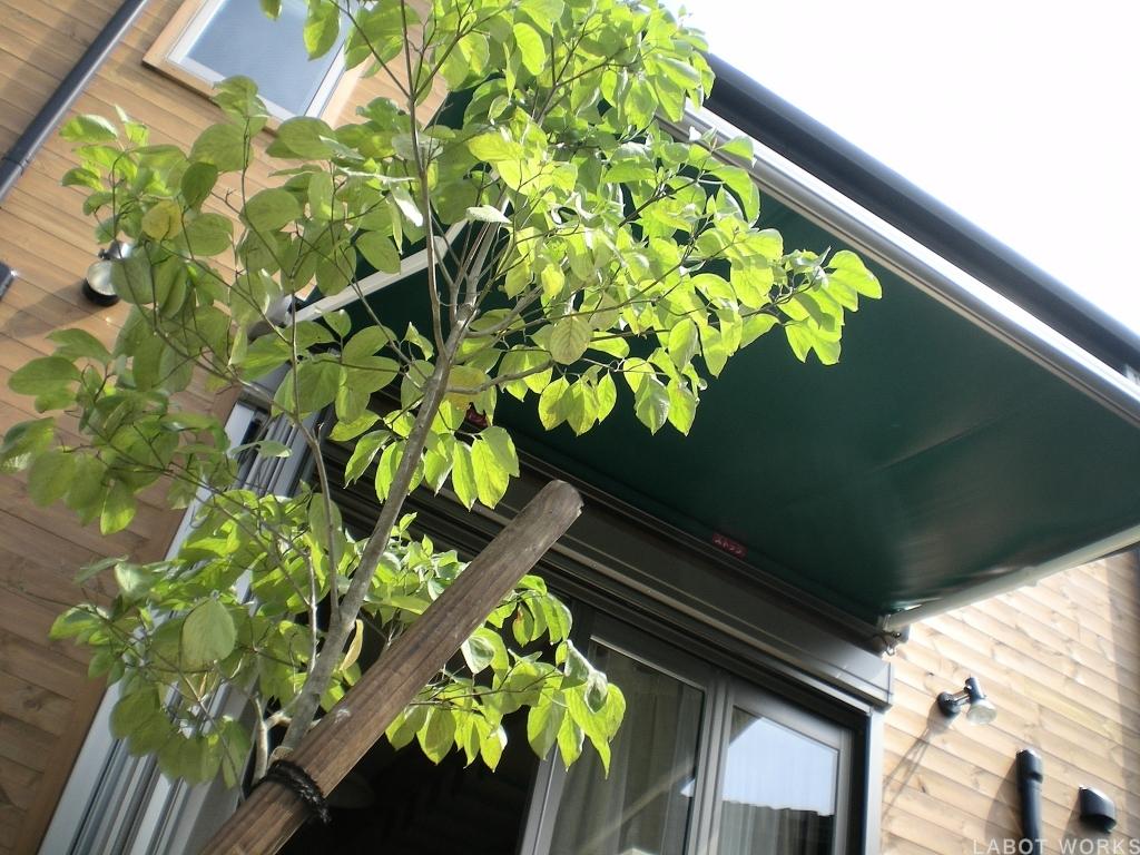 京都オアシス | 「らぼっと・わーくす」は京都,滋賀,大阪のエクステリア、ガーデニングを中心に外構・お庭工事のデザイン、設計、施工管理を一貫して行うエクステリア専門店です。