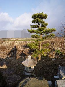 京都 LABOT - lab-t.com - P1040382 -