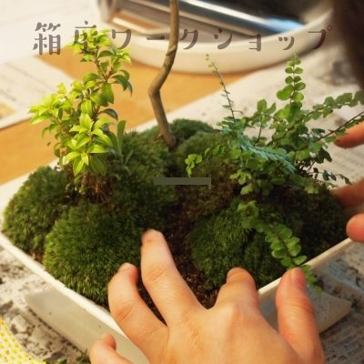 京都 LABOT - lab-t.com - 今年もワークショップやります!~動画も♪~ -