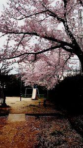 京都 LABOT - lab-t.com - IMG_3114 -