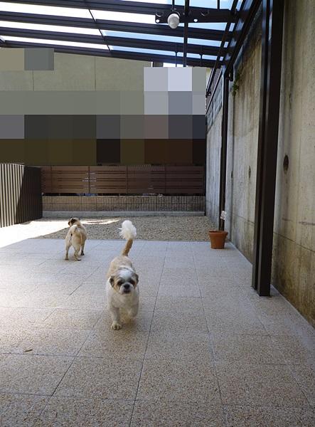 京都 LABOT - lab-t.com - 無事完成、お引渡。 -