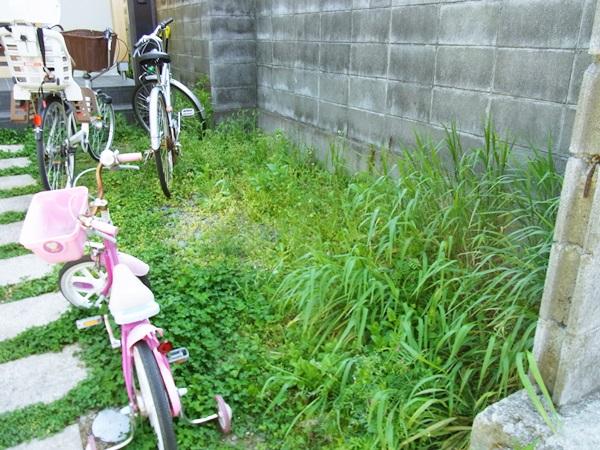 """京都 LABOT - lab-t.com - イメージは """"雑木のお庭""""です -"""