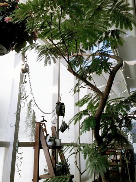 京都 LABOT - lab-t.com - 素敵な写真を送ってきてくださいました!! -