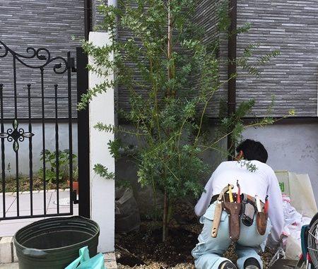 LABOT::宇治市のOB様宅、今植栽工事中です