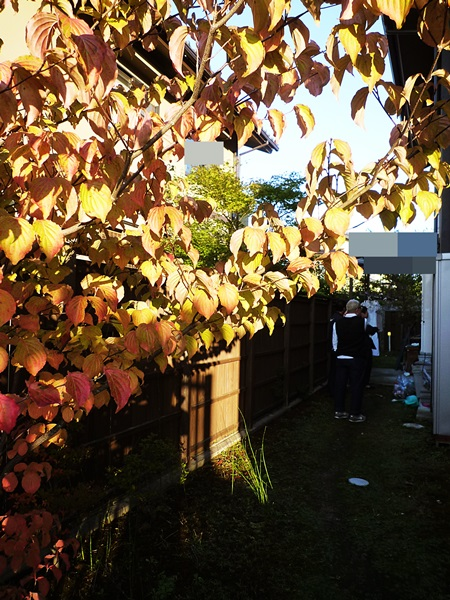 京都 LABOT - lab-t.com - 2012年に外構工事をさせていただいたお客様宅へ -