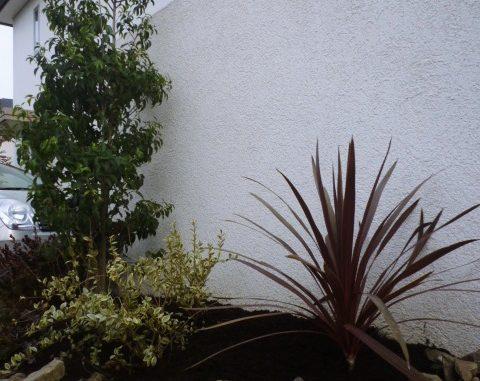 LABOT::ガーデン(植栽工事)の施工例を新しく追加しました