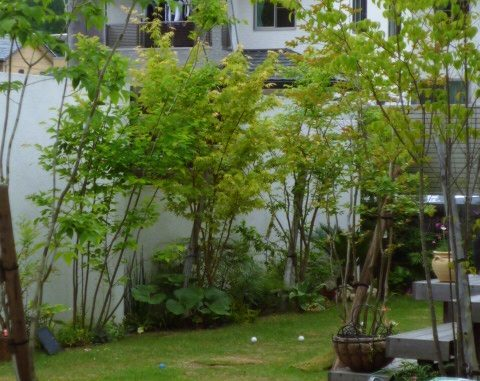 LABOT::お引渡しから2年のお庭