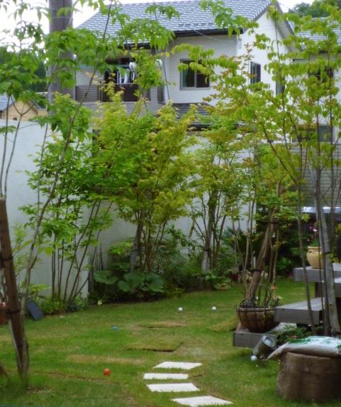 京都 LABOT - lab-t.com - お引渡しから2年のお庭 -