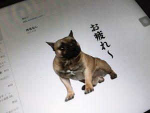 京都 LABOT - lab-t.com - IMG_0670 -