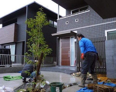 LABOT::雨男と一緒に植栽の植え込み作業へ行ってきた