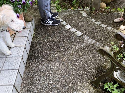 LABOT::来週から始まるお庭工事のこと@左京区