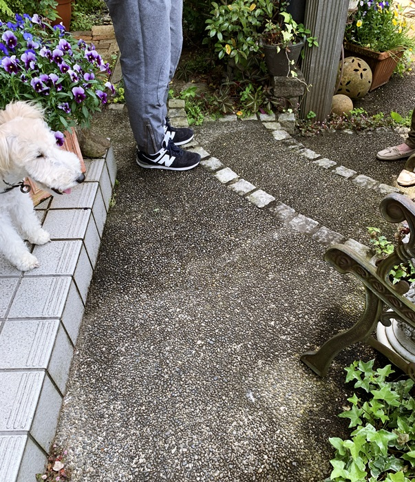 京都 LABOT - lab-t.com - 来週から始まるお庭工事のこと@左京区 -