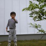 京都 LABOT - lab-t.com - リフォーム外構(植栽工事)の施工例を新しく追加しました -
