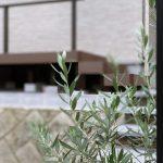 京都 LABOT - lab-t.com - N様邸の外構工事完工っ♪ -