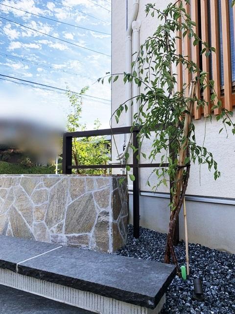 京都 LABOT - lab-t.com - 枝垂れ梅のある家 -