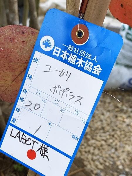 京都 LABOT - lab-t.com - 向日市F様邸の植栽工事 -