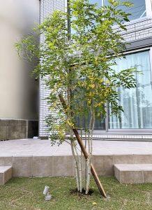 京都 LABOT - lab-t.com - hug -