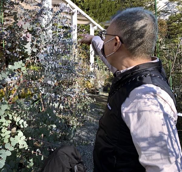 京都 LABOT - lab-t.com - 植栽で映える外構にするために。 -