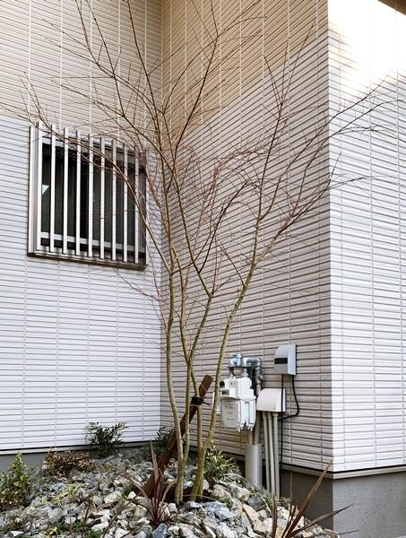 LABOT::ステンカラーのオスポールと木目調のテラス屋根