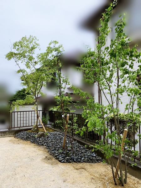 京都 LABOT - lab-t.com - 門回りは洋風ガーデン、庭側は和のイメージJで。草津市K様邸の植栽工事です。 -