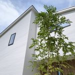 京都 LABOT - lab-t.com - ガレージの真ん中に機能門柱とシンボルツリーを入れた城陽市K様邸完工! -